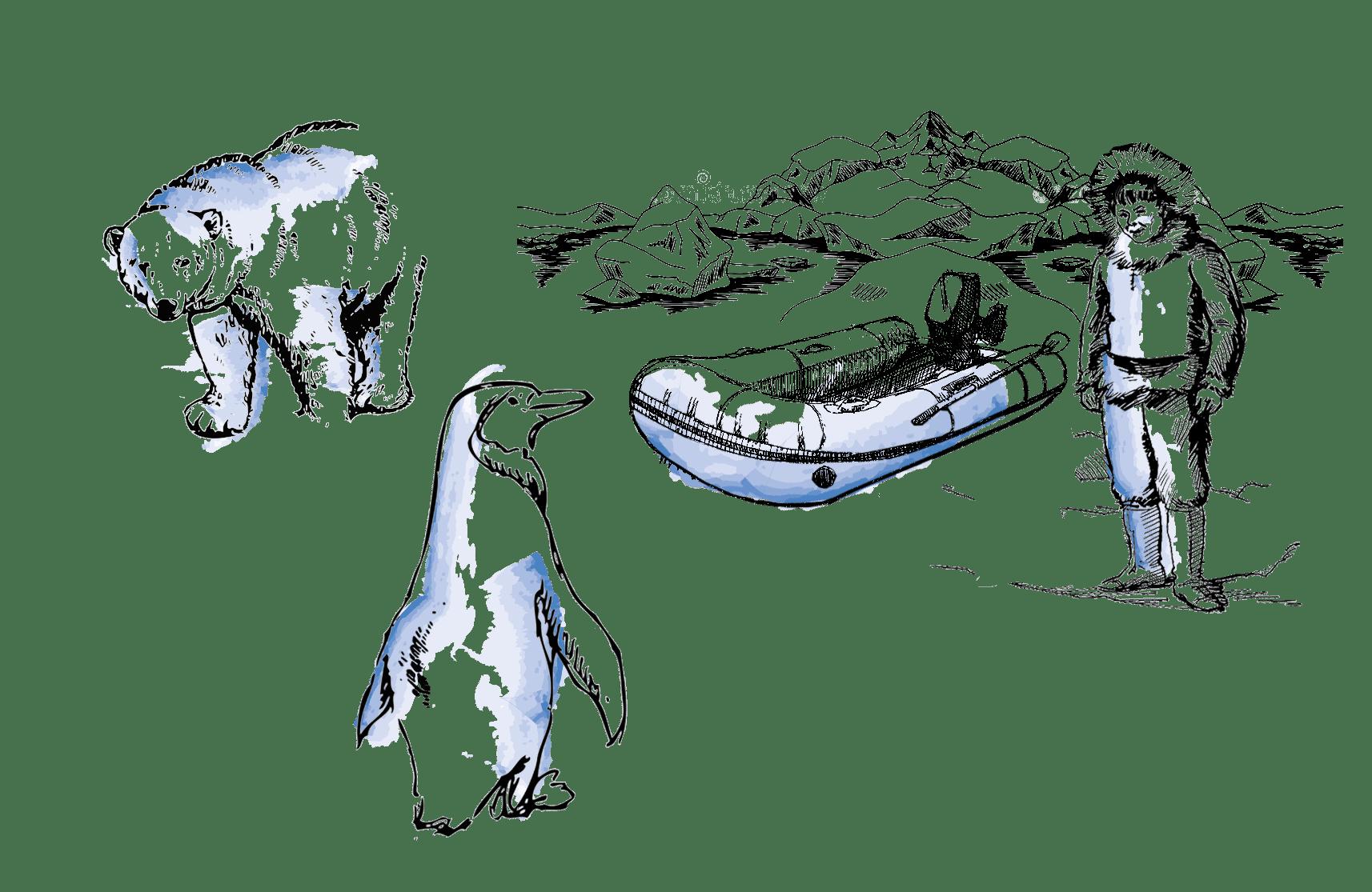 Regiones Polares   Viajes Planeta Azul