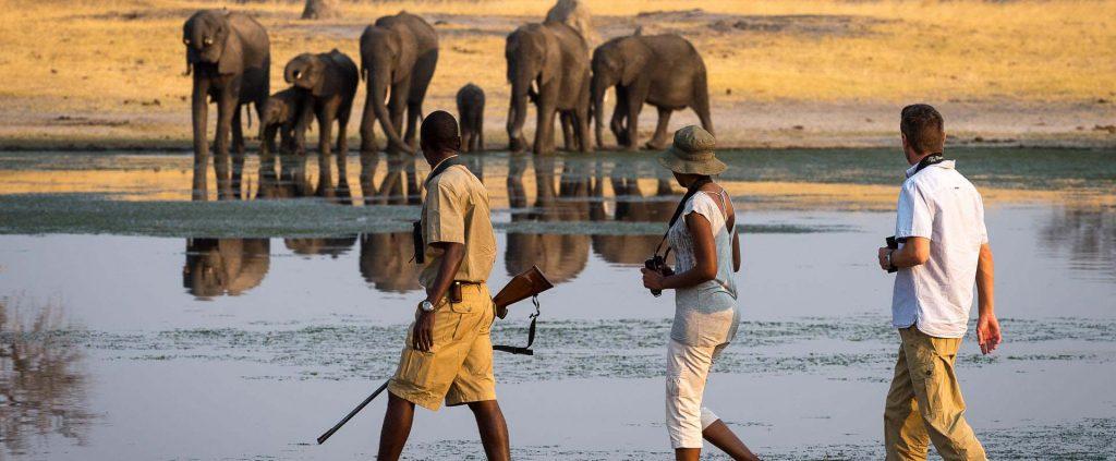 Zimbabwe   Zimbabwe   Viajes Planeta Azul